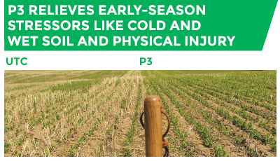 P3 relieves early-season stressors like cold and wet soil and physical injury