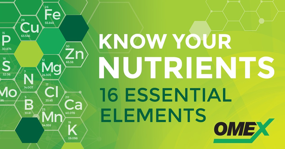 SocialMedia_Image_OMEX_16-essential-nutrients_large