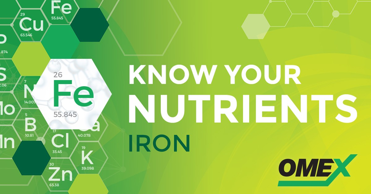 FB_OMEX_Nutrients_SocialSharingImage_Iron