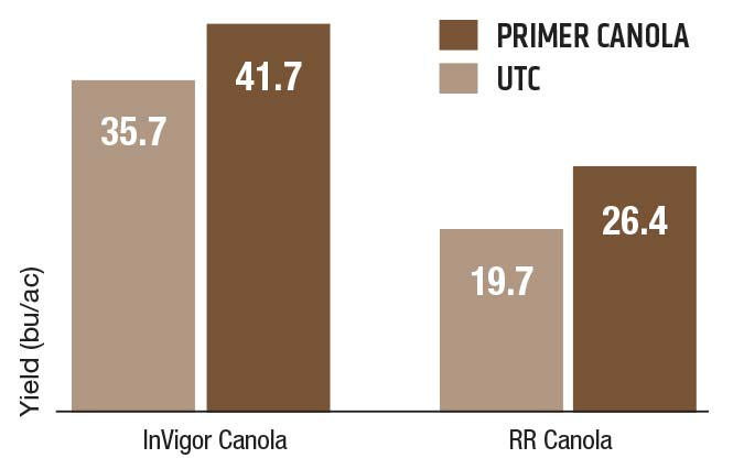 Primer Canola Findings chart