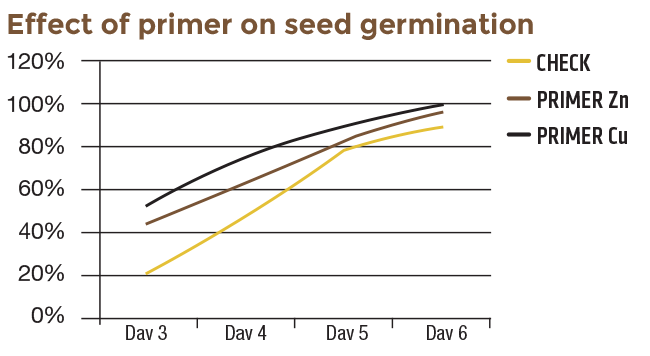 Effect of primer on seed germination